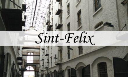 Sint – Felixpakhuis