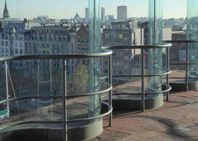 Antwerpse Fluitsteraar - zicht vanaf het MAS