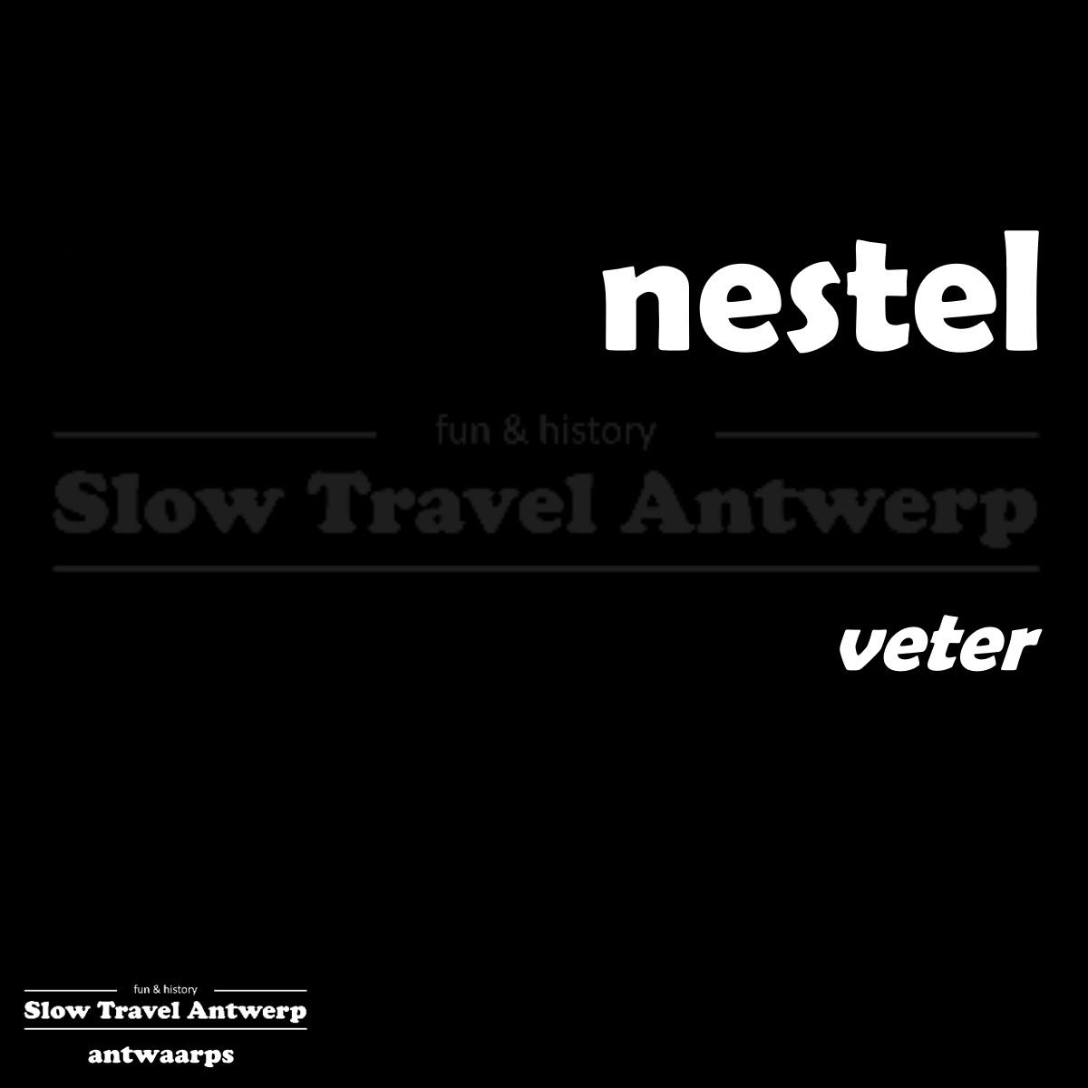 nestel – veter – shoelace