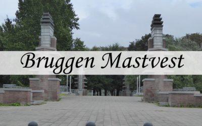 Bridges over Mastvest in the tentoonstellingswijk