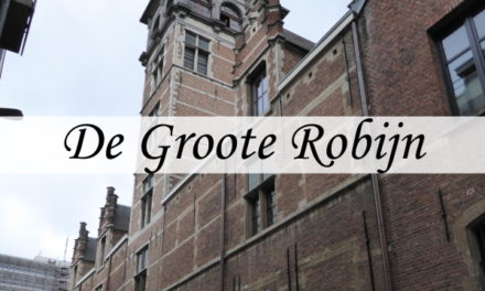 De Groote Robijn with the Van Straelentower