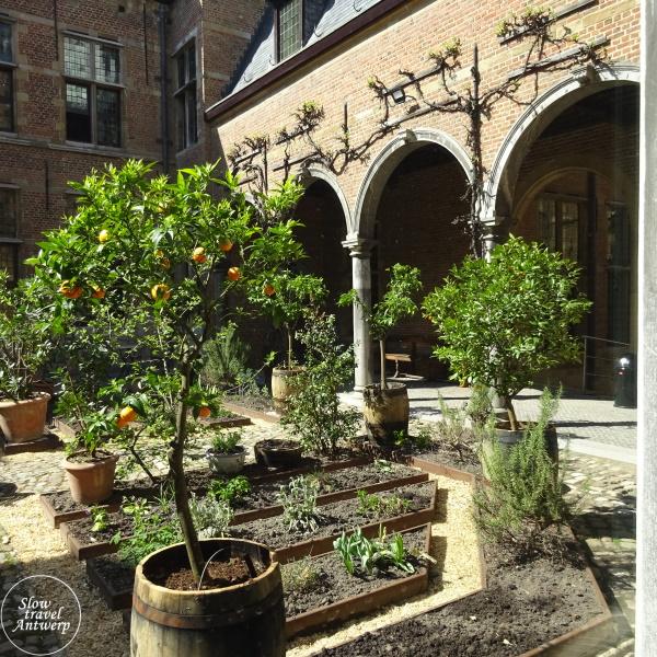 Museum Snijders & Rockoxhuis Antwerpen - binnentuin met appelsienenboompjes